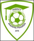 Akademia Piłkarska PERFECT Przeworsk Logo